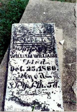 WATTS WILLIAMS, MARY - Gallia County, Ohio | MARY WATTS WILLIAMS - Ohio Gravestone Photos