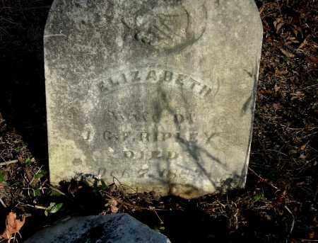 RIPLEY, ELIZABETH - Gallia County, Ohio   ELIZABETH RIPLEY - Ohio Gravestone Photos