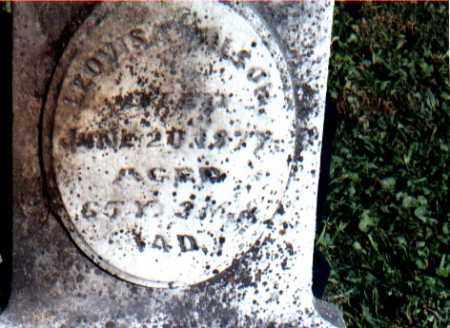 WILSON, LOUISA - Greene County, Ohio | LOUISA WILSON - Ohio Gravestone Photos
