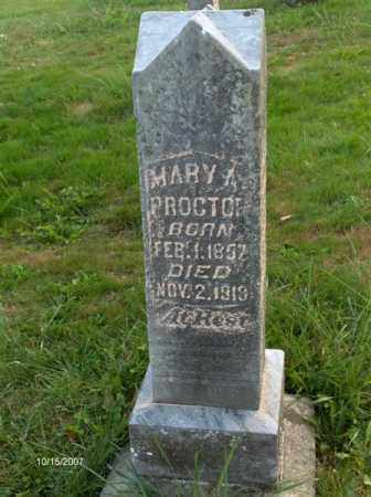 LANNING PROCTOR, MARY ANN - Guernsey County, Ohio | MARY ANN LANNING PROCTOR - Ohio Gravestone Photos