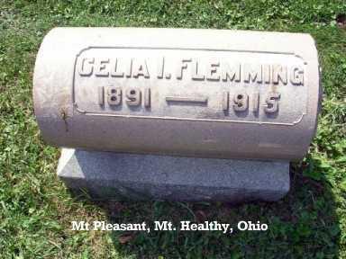 NEESE FLEMMING, CELIA - Hamilton County, Ohio | CELIA NEESE FLEMMING - Ohio Gravestone Photos
