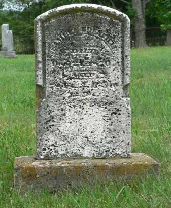 EDENFIELD, SAMUEL - Highland County, Ohio | SAMUEL EDENFIELD - Ohio Gravestone Photos