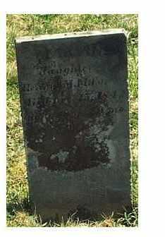 PALMER, MARTHA - Highland County, Ohio | MARTHA PALMER - Ohio Gravestone Photos