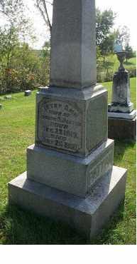 PATTON, BETSY ANN - Highland County, Ohio   BETSY ANN PATTON - Ohio Gravestone Photos