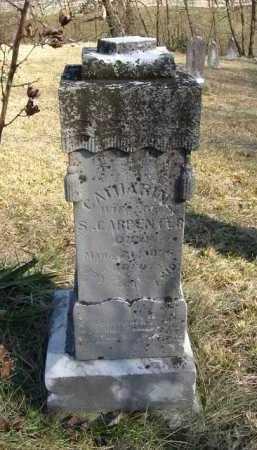 WALTERS CARPENTER, CATHARINE - Hocking County, Ohio | CATHARINE WALTERS CARPENTER - Ohio Gravestone Photos