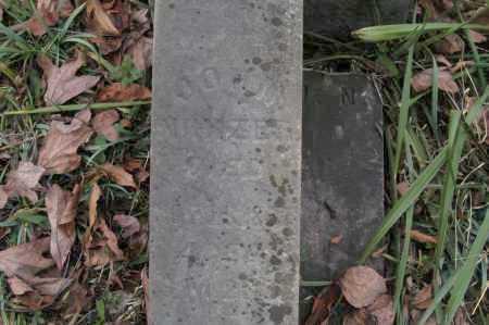 NIHIZER, JOHN - Hocking County, Ohio | JOHN NIHIZER - Ohio Gravestone Photos