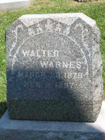 WARNES, WALTER - Holmes County, Ohio | WALTER WARNES - Ohio Gravestone Photos