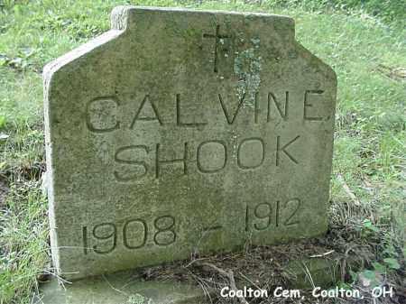 SHOOK, CALVIN - Jackson County, Ohio | CALVIN SHOOK - Ohio Gravestone Photos