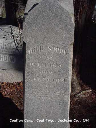 SHOOK, NANCY ABIGAIL - Jackson County, Ohio | NANCY ABIGAIL SHOOK - Ohio Gravestone Photos
