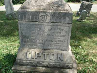 TIPTON, SARAH - Jefferson County, Ohio | SARAH TIPTON - Ohio Gravestone Photos
