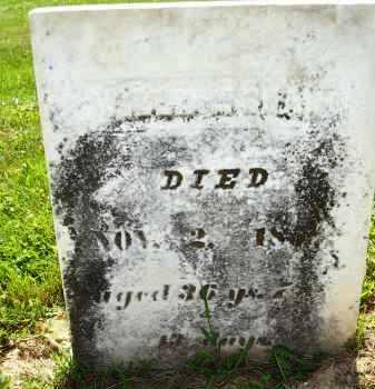 SHAW, WILLIAM - Knox County, Ohio   WILLIAM SHAW - Ohio Gravestone Photos