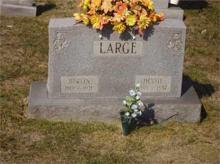 LARGE, DESSIE - Lawrence County, Ohio   DESSIE LARGE - Ohio Gravestone Photos