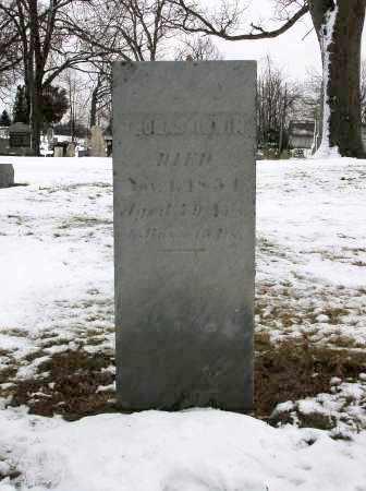 IRWIN, THOMAS - Logan County, Ohio | THOMAS IRWIN - Ohio Gravestone Photos