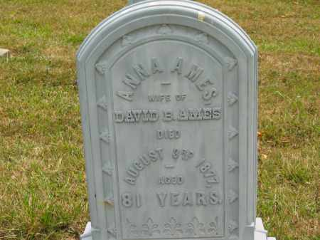 AMES, ANNA - Lorain County, Ohio | ANNA AMES - Ohio Gravestone Photos