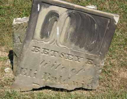 BALDWIN, BETSEY E. - Lorain County, Ohio | BETSEY E. BALDWIN - Ohio Gravestone Photos