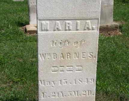 BARNES, WM. - Lorain County, Ohio | WM. BARNES - Ohio Gravestone Photos