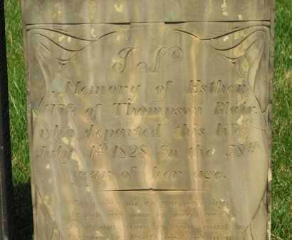 BLAIR, ESTHER - Lorain County, Ohio | ESTHER BLAIR - Ohio Gravestone Photos