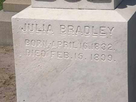 BRADLEY, JULIA - Lorain County, Ohio | JULIA BRADLEY - Ohio Gravestone Photos