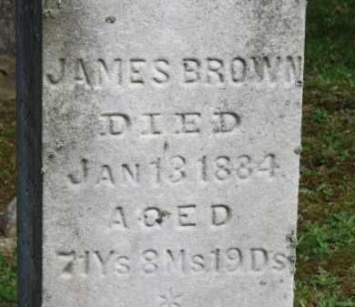 BROWN, JAMES - Lorain County, Ohio | JAMES BROWN - Ohio Gravestone Photos