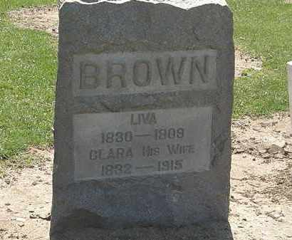 BROWN, LIVA - Lorain County, Ohio   LIVA BROWN - Ohio Gravestone Photos