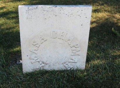 CHAPMAN, AMASA - Lorain County, Ohio | AMASA CHAPMAN - Ohio Gravestone Photos