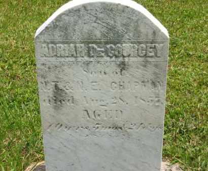 CHAPMAN, N.E. - Lorain County, Ohio | N.E. CHAPMAN - Ohio Gravestone Photos