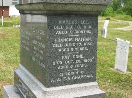 CHAPMAN, FRANCIS NATHAN - Lorain County, Ohio | FRANCIS NATHAN CHAPMAN - Ohio Gravestone Photos