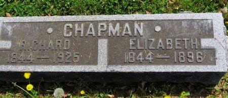 CHAPMAN, ELIZABETH - Lorain County, Ohio | ELIZABETH CHAPMAN - Ohio Gravestone Photos