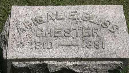 BLISS CHESTER, ABIGAL E. - Lorain County, Ohio | ABIGAL E. BLISS CHESTER - Ohio Gravestone Photos