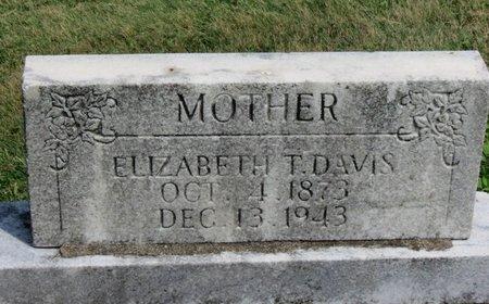 DAVIS, ELIZABETH T. - Lorain County, Ohio | ELIZABETH T. DAVIS - Ohio Gravestone Photos