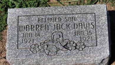 DAVIS, WARREN JACK - Lorain County, Ohio   WARREN JACK DAVIS - Ohio Gravestone Photos