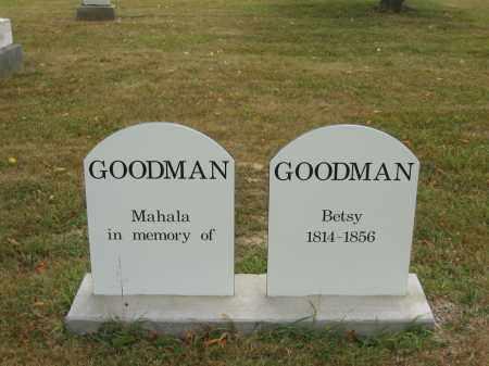 GOODMAN, MAHALA - Lorain County, Ohio   MAHALA GOODMAN - Ohio Gravestone Photos
