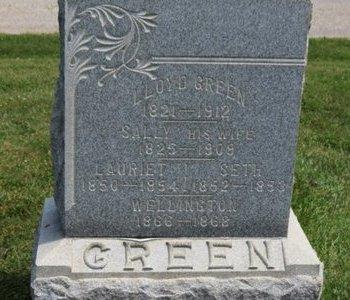 GREEN, WELLINGTON - Lorain County, Ohio | WELLINGTON GREEN - Ohio Gravestone Photos