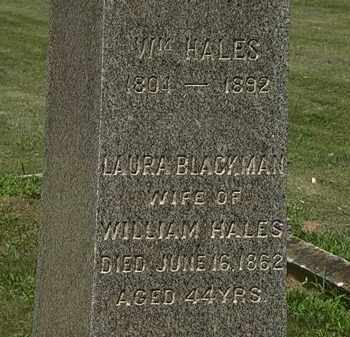 HALES, WM. - Lorain County, Ohio | WM. HALES - Ohio Gravestone Photos