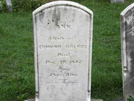 HOLMES, ANN - Lorain County, Ohio | ANN HOLMES - Ohio Gravestone Photos