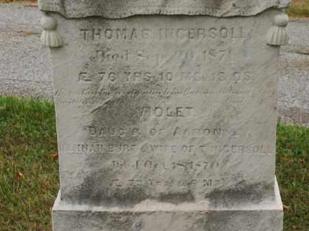 BURT, HANNAH - Lorain County, Ohio   HANNAH BURT - Ohio Gravestone Photos