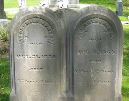 JONES, LODOWICK - Lorain County, Ohio | LODOWICK JONES - Ohio Gravestone Photos