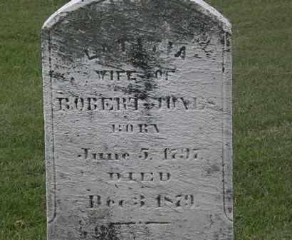 JONES, ROBERT - Lorain County, Ohio   ROBERT JONES - Ohio Gravestone Photos