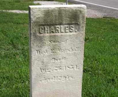 MARSHALL, W. - Lorain County, Ohio   W. MARSHALL - Ohio Gravestone Photos