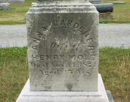 MOLE, HENRY - Lorain County, Ohio   HENRY MOLE - Ohio Gravestone Photos