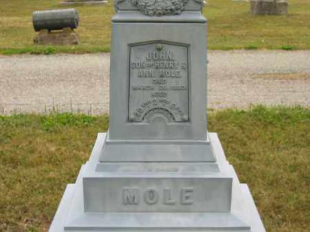 MOLE, HENRY - Lorain County, Ohio | HENRY MOLE - Ohio Gravestone Photos