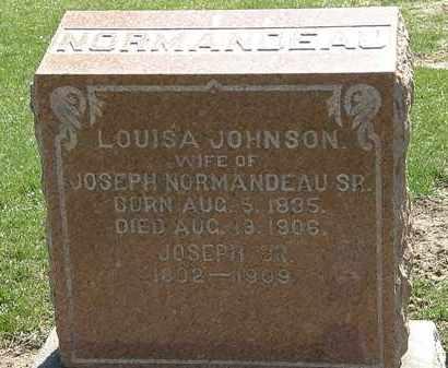 NORMANDEAU, LOUISA - Lorain County, Ohio | LOUISA NORMANDEAU - Ohio Gravestone Photos