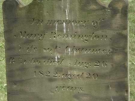 REMINGTON, MARY - Lorain County, Ohio | MARY REMINGTON - Ohio Gravestone Photos