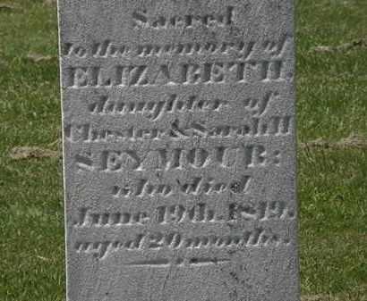 SEYMOUR, ELIZABETH - Lorain County, Ohio | ELIZABETH SEYMOUR - Ohio Gravestone Photos