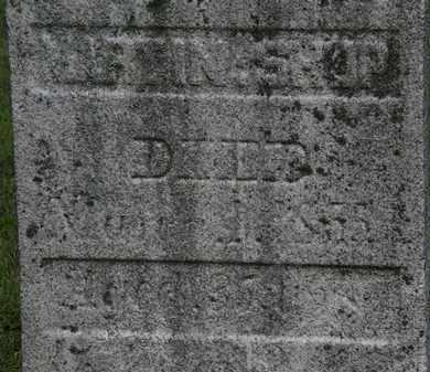 SHUP, MARTIN - Lorain County, Ohio   MARTIN SHUP - Ohio Gravestone Photos