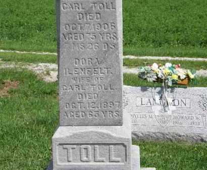 TOLL, CARL - Lorain County, Ohio | CARL TOLL - Ohio Gravestone Photos