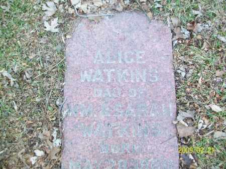 WATKINS, ALICE - Lorain County, Ohio | ALICE WATKINS - Ohio Gravestone Photos