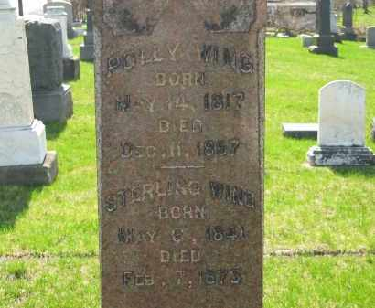 WING, POLLY - Lorain County, Ohio | POLLY WING - Ohio Gravestone Photos