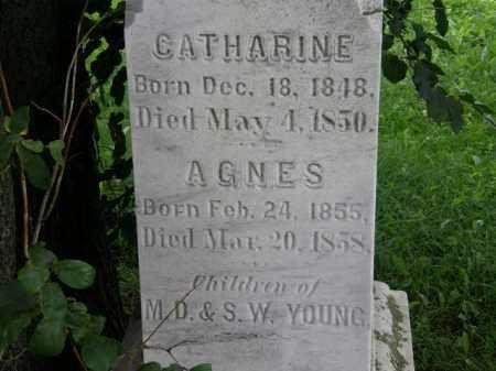 YOUNG, S.W. - Lorain County, Ohio | S.W. YOUNG - Ohio Gravestone Photos