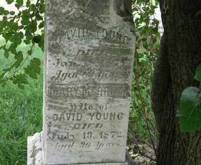 YOUNG, DAVID - Lorain County, Ohio   DAVID YOUNG - Ohio Gravestone Photos
